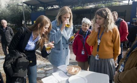 Jornadas celebradas en el Parque de las Ciencias sobre la recogida de la aceituna (PARQUE DE LAS CIENCIAS)