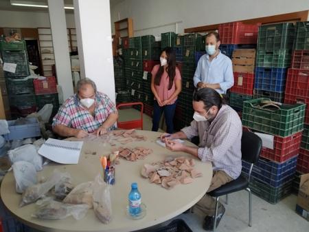 Clasificación y catalogación de los restos arqueológicos (AYTO. ALMUÑECAR)