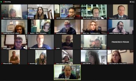 Imagen de la reunión telemática (AECOST)
