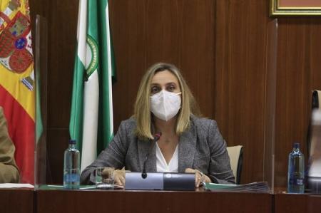 Marifran Carazo en la Comisión de fomento (JUNTA)